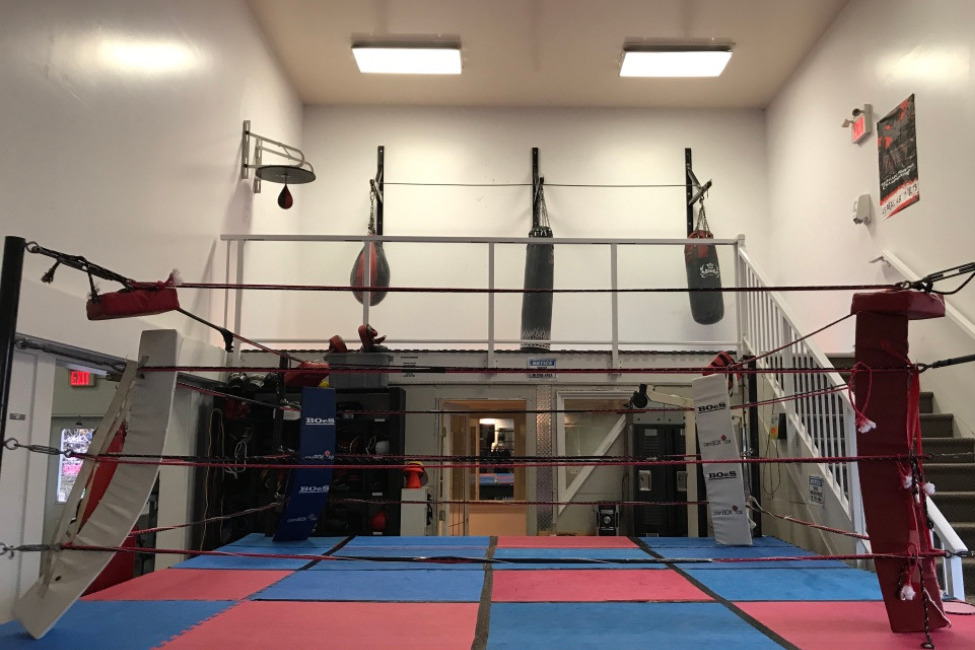 Sparring Ring with Heavy Punch Bags